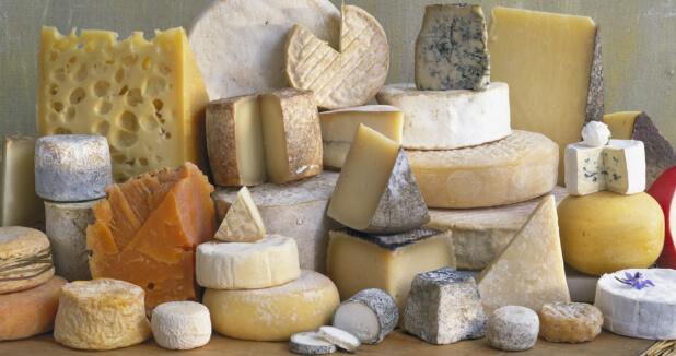 Degustación queso - Evento gastronómico
